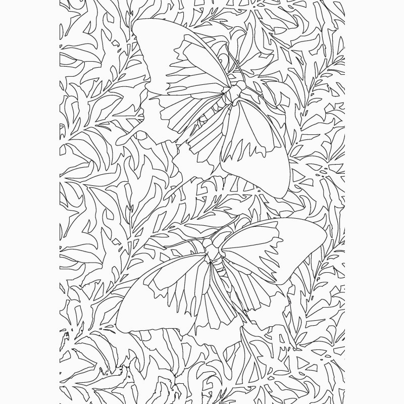 290 papillons coloriages anti stress