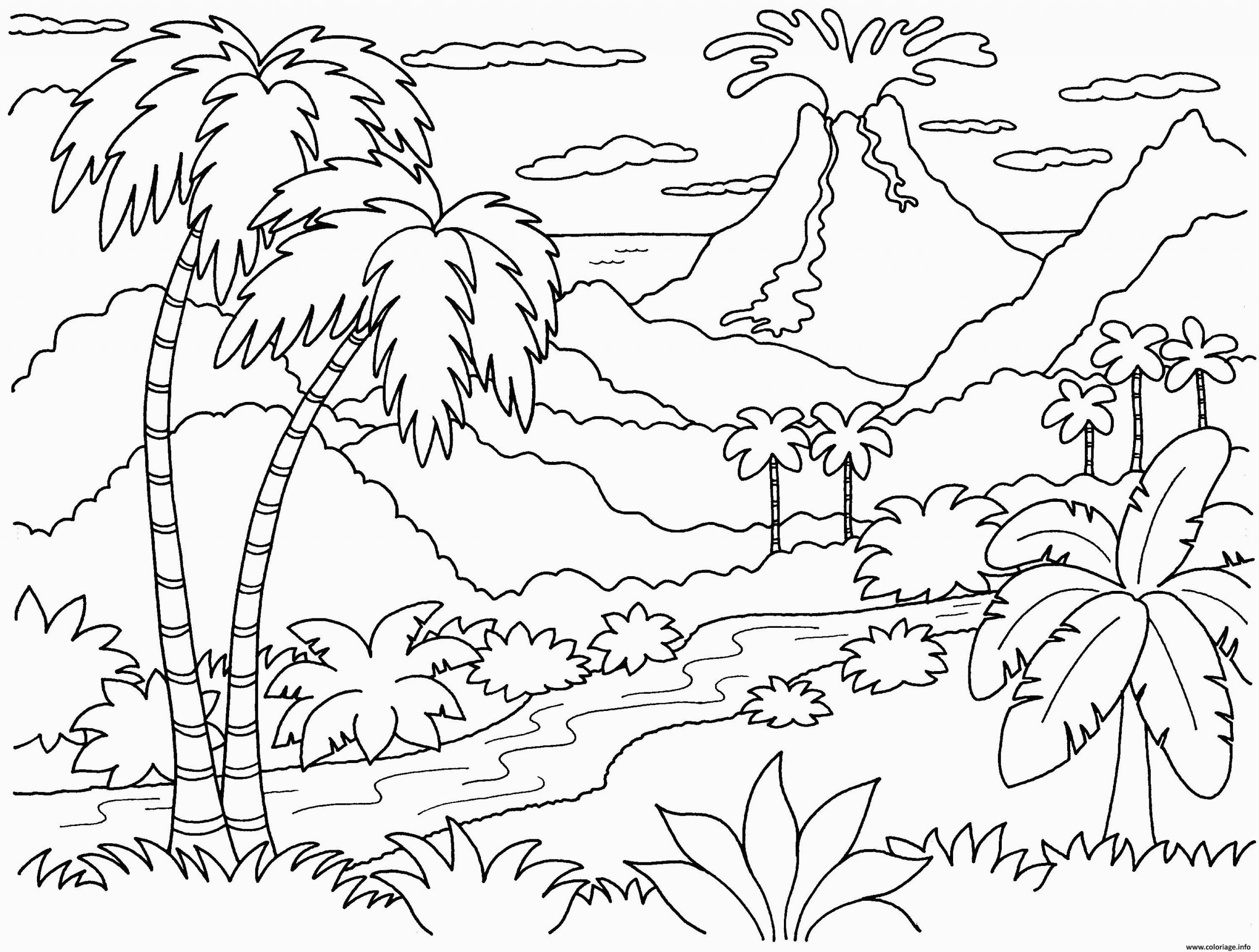 nature paysage volcan coloriage dessin